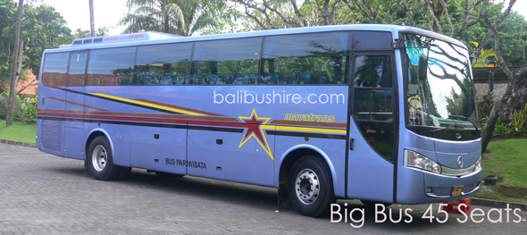 bali bus hire 45 seats cheaper in bali