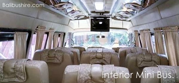 Interior TV Karaoke Mini bus 17 Seats