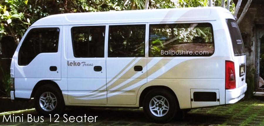 Charter Mini Bus Isuzu ELF 12 Seats