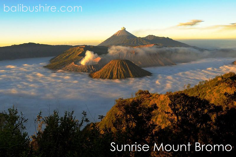 Sunrice Monut Bromo East of Java